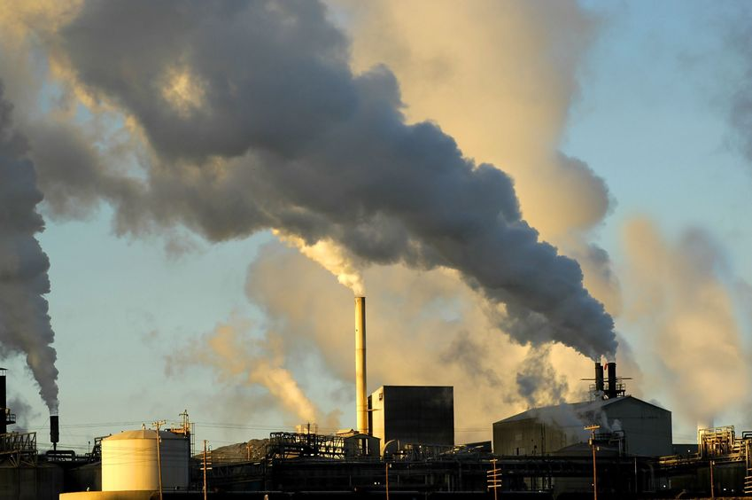 Environmental Toxins - Sources and Alternatives