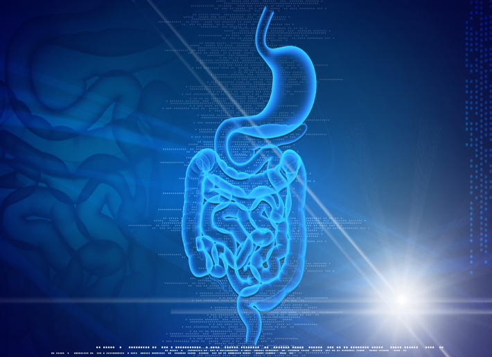 The Importance of Optimizing Digestion -  Natural Treatment Strategies