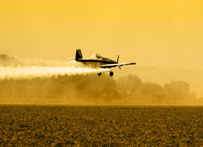 The Problem with Pesticides- Further Explained