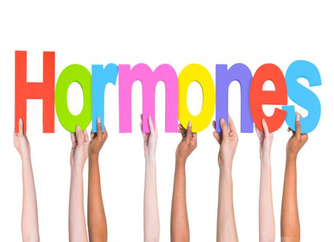 Female Hormones - Why They Become Imbalanced